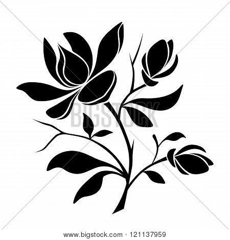 Magnolia flowers. Vector black silhouette.