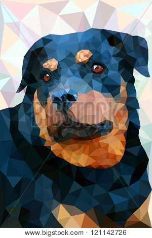 Dog breed rottweiler head with open mouth