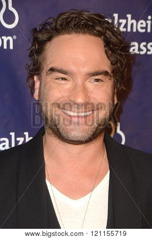 LOS ANGELES - MAR 9:  Johnny Galecki at the A Night at Sardis - 2016 Alzheimer's Association Event at the Beverly Hilton Hotel on March 9, 2016 in Beverly Hills, CA