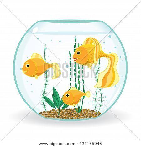 3 goldfish in fishbowl