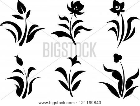Vector flowers and plant sprouts illustrations isolated