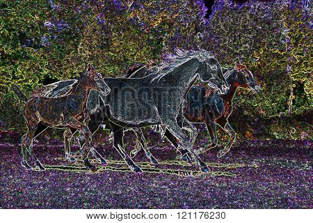 Trotting Mares And Foals In The Meadow Photo As Artistic Drawing Graphics
