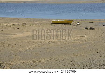 Small Yellow Boat