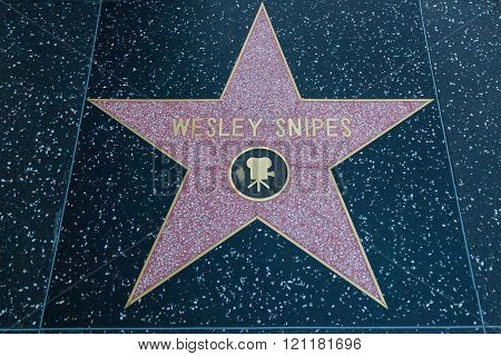 Wesley Snipes Hollywood Star