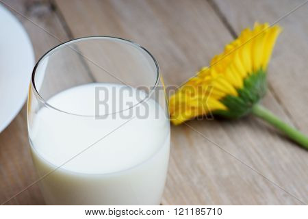 Glass of milk and gerber on the wooden table