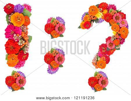 punctuation marks Made From Flowers