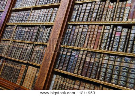 Ancient Bookshelves