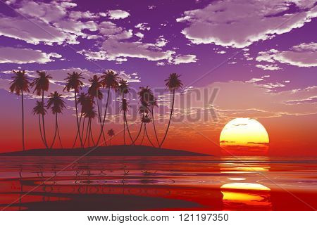 Sunset At Tropical Sea