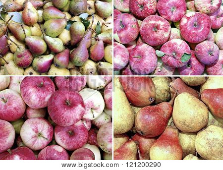 Backgrounds Of Many Ripe Juicy Yellow And Red Pears And Big Red Ripe Apples