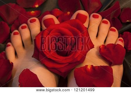 Pedicure with a red rose and petals