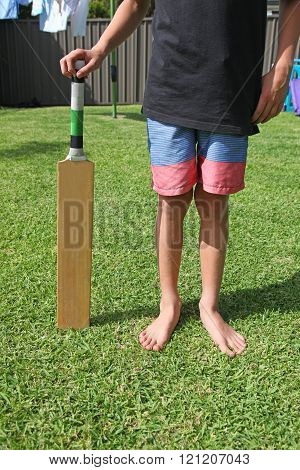 Backyard Cricket