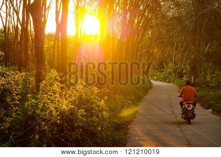 Motorbike scooter drives along a jungle road while sunset in the Forrest of Koo Mook Island in Thailand