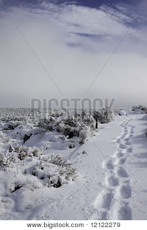 A snowy landscape with a path of footprints and cloud covered blue sky