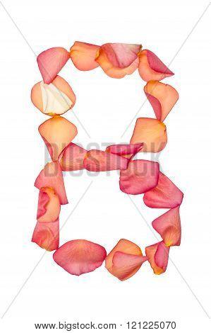 B letter made of pink rose petal