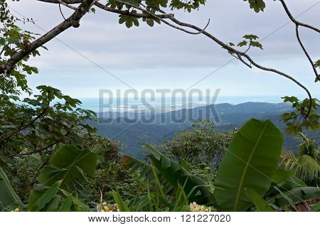 Aerial View In El Yunque Rainforest