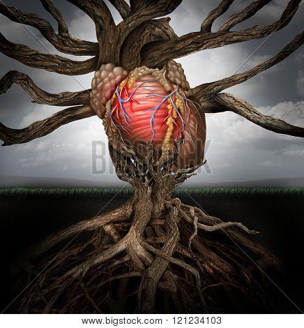 Human Heart Health Concept