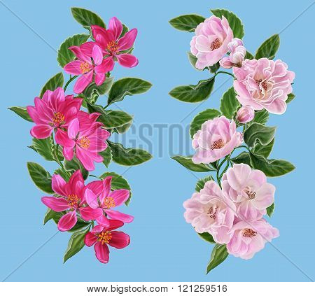 Set. The Composition Of The Branches Of Apple Blossom. Spring Flowering. Red And Pink Flowers Of App