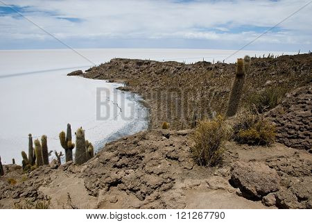 Photographs taken in the Salar de Uyuni , Bolivia .