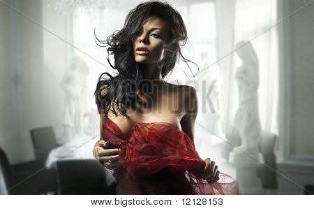 Delicate brunette posing in a stylish room