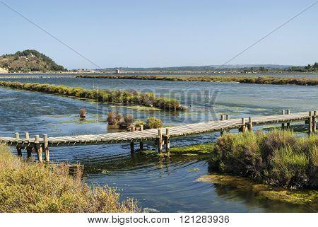 Peyriac-de-mer (languedoc-roussillon, France): Pond