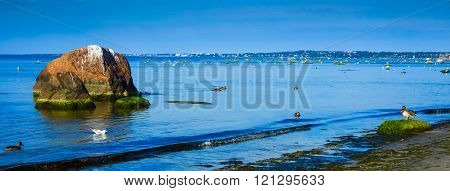Cool Baltic Sea