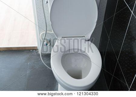 Lavatory Flush Toilet