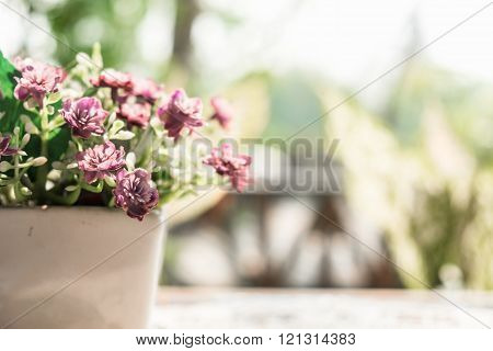 Purple Flowers In The Pot On The Table