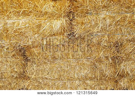 Hay Briquette Stack As Animal Food At Animal Farm As A Background