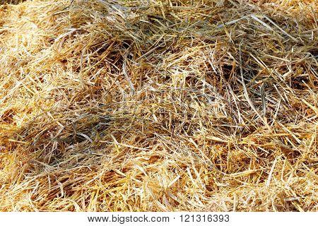 Close Up Of Haystack On Animal Farm