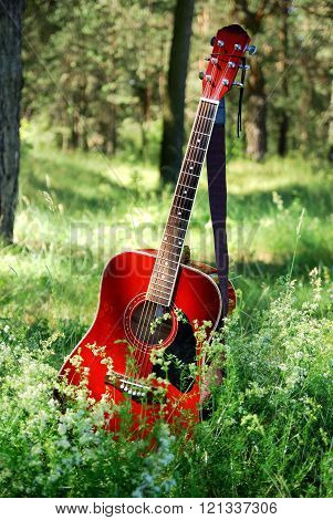 Guitar Acoustic In The Grass