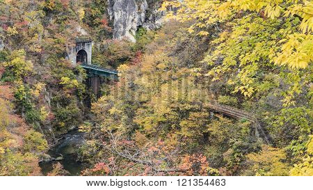 Naruko Gorge Autumn leaves in the fall season, Japan