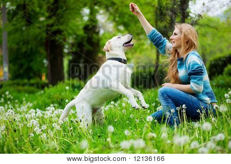 Beautiful woman with playful young dog on fresh green meadow