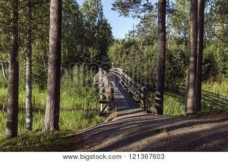 Minor wooden bridge in a grove of trees.