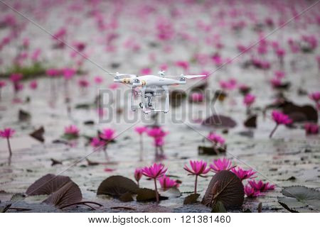 Drone Aircraft  Hovering On Lake Of Pink Lotus.