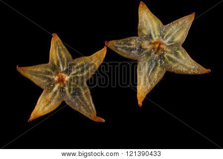 Star apple on a black background, Carambola