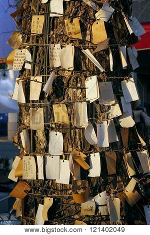 A Wishing Tree With Many Requests