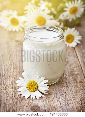 Homemade Yogurt ,  Bouquet Camomiles