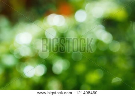Green  blurred   water drops