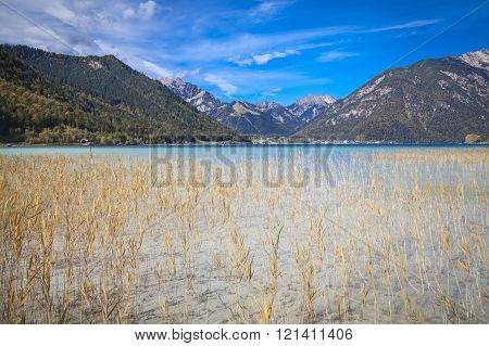 Reeds On The Shore Of Lake Achen