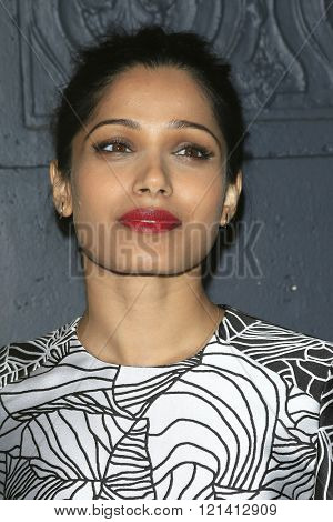 LOS ANGELES - MAR 1: Freida Pinto attends the Premiere of Broad Green Pictures' 'Knight of Cups'  at The Theatre at Ace Hotel  on March 1, 2016 in Los Angeles, California