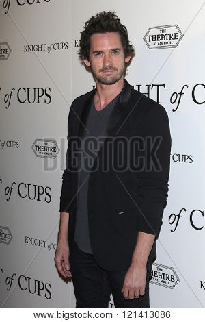 LOS ANGELES - MAR 1: Will Kemp attends the Premiere of Broad Green Pictures' 'Knight of Cups'  at The Theatre at Ace Hotel on March 1, 2016 in Los Angeles, California