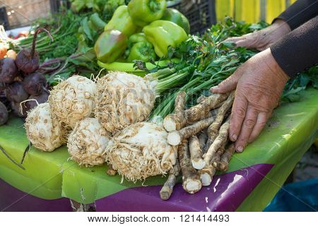Celery and parsley root in the market / close-up. Selective focus.