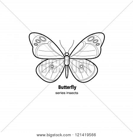 Vector illustration insect butterfly. Insect in a modern style mono line isolated on a white background. Black and white image of an insect.