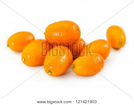 Fresh Citrus Kumquat