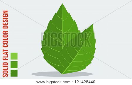 Vector fresh mint leaves with minimal solid flat colors