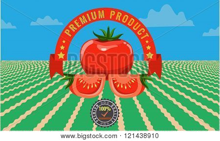 Tomato vintage advertising poster - Metal sign and label design.