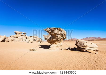 Stone Tree, Altiplano