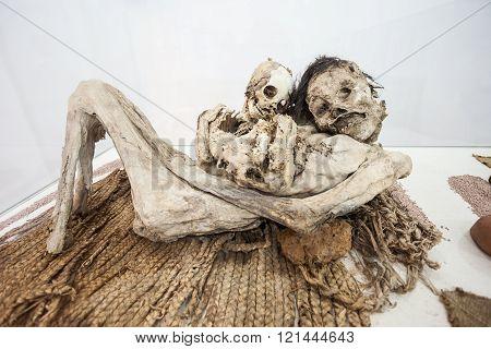 Mummified Human Corpse