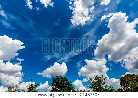 Wispy Feathery Cirrus Clouds with Blue Sky