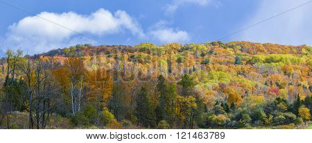 Wide section of a mountain showing leaves changing colour at fall.